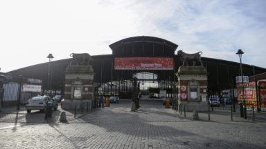 Un subside de 10 millions d'euros pour construire un nouvel abattoir à Anderlecht