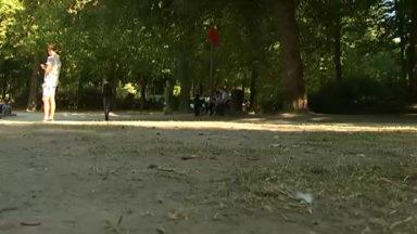 Parc de Bruxelles : les pelouses dans un état déplorable, la faute à qui ?