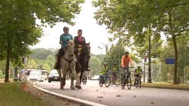 Bruxelles sans voiture mais à cheval