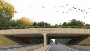 Les travaux de l'écoduc du ring de Bruxelles entrent dans une nouvelle phase