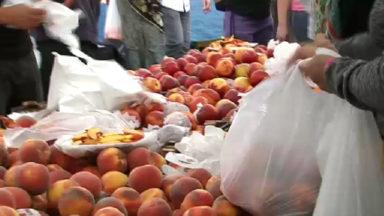 Après Delhaize, Colruyt va supprimer les sachets en plastique pour les fruits et légumes