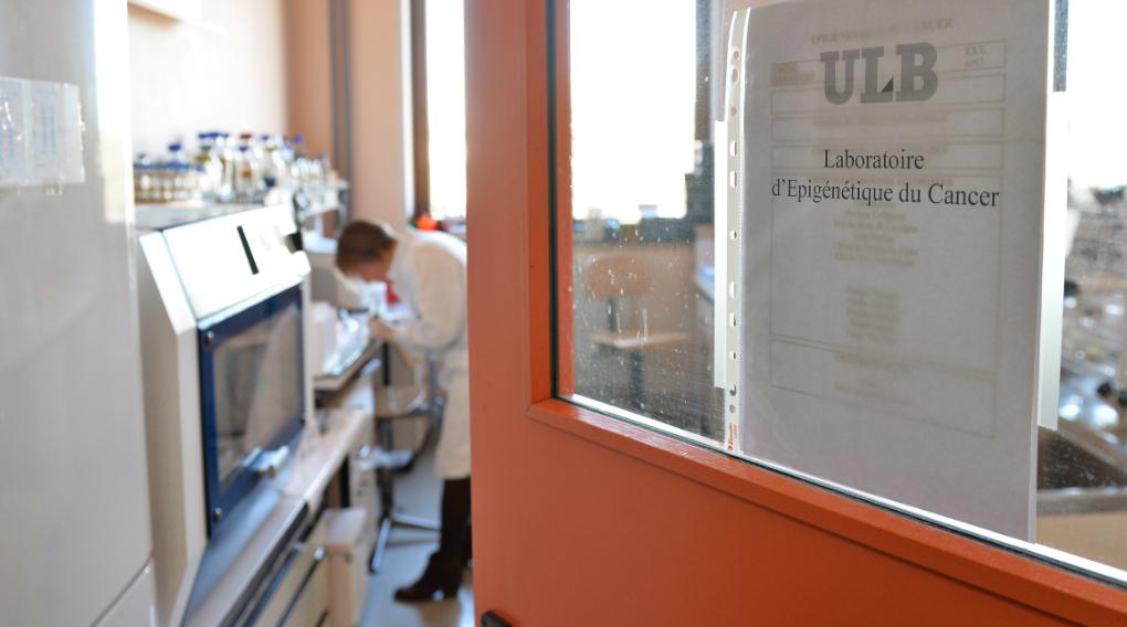 ULB-chercheurs