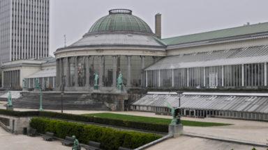 Le Botanique va en appel et maintient son recours au Conseil d'Etat