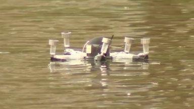 Ce drôle d'appareil mesure la qualité des eaux aux étangs d'Ixelles