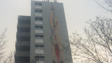Une nouvelle fresque murale fait son apparition sur une façade de Bruxelles