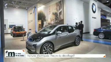 Robert Van Apeldoorn (Trends-Tendance) «La voiture électrique est en dessous de 0,5 % des immatriculations»