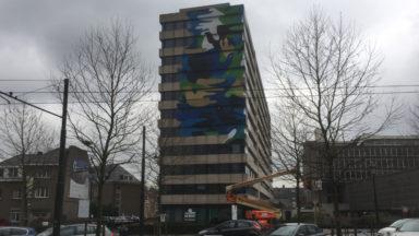 La plus grande fresque éphémère de Bruxelles à Auderghem