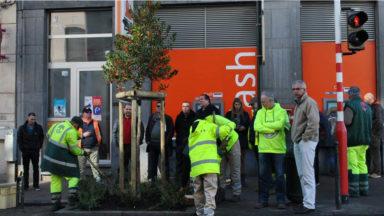 33 arbres plantés rue Marie-Christine à Laeken