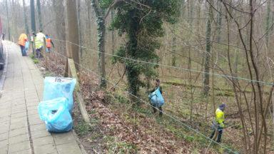 Des personnes handicapées mentales nettoient la Forêt de Soignes