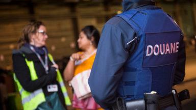 Quelque 2.000 hippocampes séchés trouvés dans des bagages à Brussels Airport