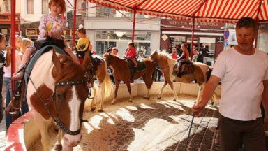 La Région bruxelloise interdit les poneys de foire à partir du 1er janvier 2019