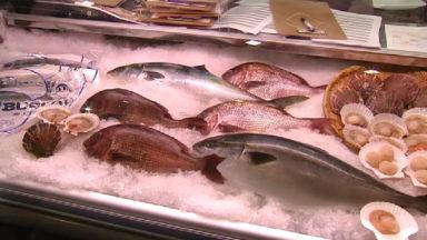Bruxelles accueille le 25e Seafood, le premier salon mondial dédié aux produits de la mer
