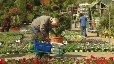 Les bons gestes de jardinage au mois d'avril
