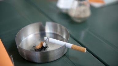 Anderlecht : 1.341 paquets de cigarettes de contrefaçon saisis
