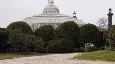 Le bourgmestre de Bruxelles demande au roi Philippe d'ouvrir au public le parc royal de Laeken