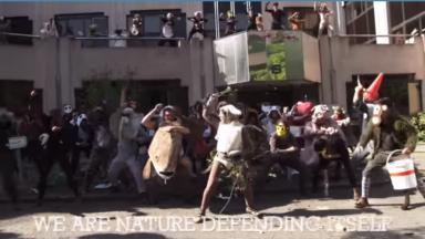 Les «activistes-animaux de la nature» préparent leur procès