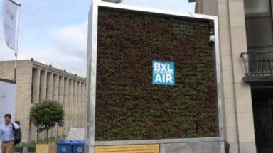 Le City Tree de Bruxelles, censé purifier l'air sur le Mont des Arts, est déjà desséché