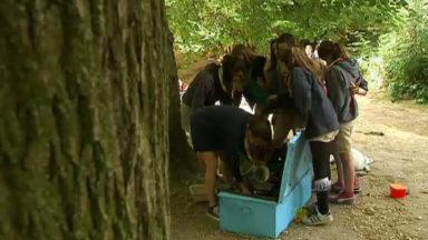 Les scouts se préparent pour leur camps d'été