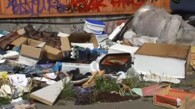L'application Fix My Street étendu à la fonction propreté