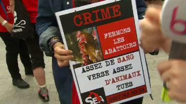 4ème journée mondiale contre les abattoirs, rassemblement à Bruxelles