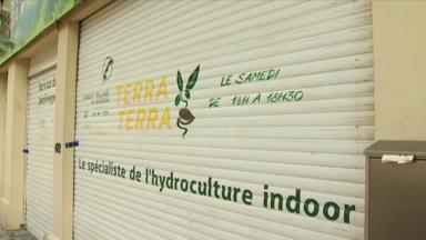 Des magasins d'aménagement de jardin fermés pour trafic de stupéfiants
