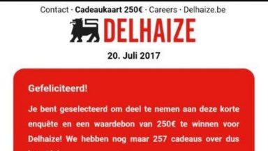 Lidl et Delhaize lancent un appel contre une arnaque via WhatsApp