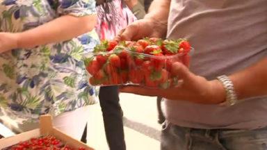 Les prix des fruits et légumes augmentent : le gel et la sécheresse en cause