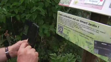 Le premier smart jardin de Belgique a ouvert ses portes à Auderghem