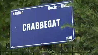 Uccle : 3.000 personnes veulent protéger le chemin du Crabbegat face à l'extension du club de tennis voisin