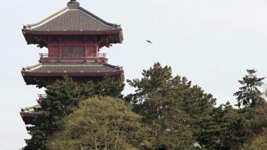 La Tour japonaise et le Pavillons chinois seront bientôt classés