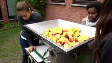 Du jus de pomme à la presse manuelle, GoodPlanet encourage les écoles à manger local
