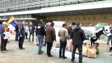 Les producteurs de lait manifestent devant le Parlement européen