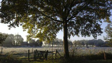 Un dimanche de novembre entre éclaircies et petites averses