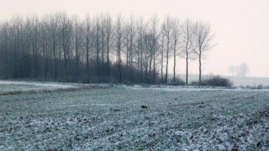 La neige est arrivée à Bruxelles mais se transforme en pluie