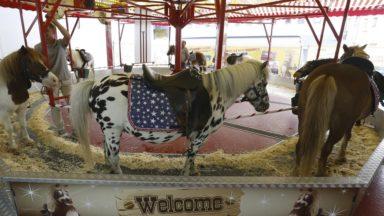 Bien-être animal : carrousels à poneys, delphinariums et pièges à colle bientôt interdits
