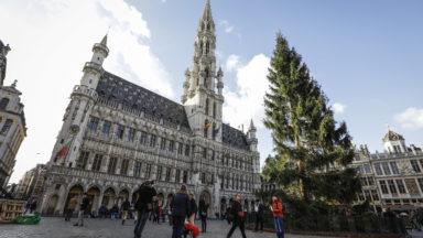 Le sapin de Noël a été coupé à Baelen et trônera sur la Grand-Place de Bruxelles dès ce jeudi