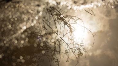 Météo : timide retour du soleil et des éclaircies