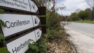 Le jardin botanique de Meise enregistre un record d'affluence et d'abonnés en 2017