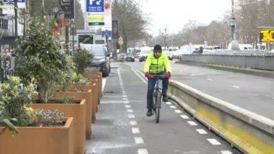 """La piste cyclable de l'avenue de la Toison d'Or sécurisée : """"C'était une demande des cyclistes"""""""