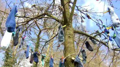 L'opération Chaussettes Bleues sensibilise à l'autisme dans le Bois de la Cambre