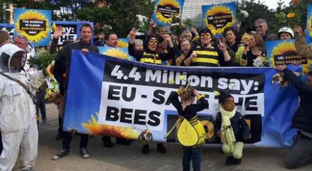 L'UE interdit trois néonicotinoïdes dangereux pour les abeilles