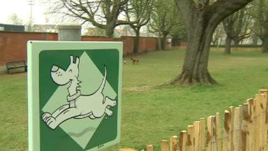 Ganshoren : un chien empoisonné, la commune demande aux habitants d'être vigilants