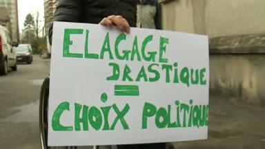 Élagage des marronniers à Forest: le collectif citoyen entendu par Pascal Smet