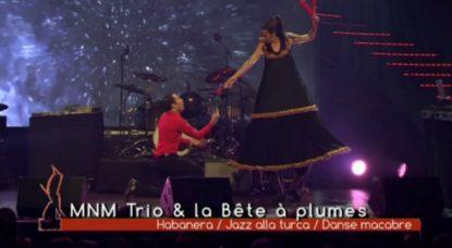 MNM Trio et la Cie la Bête à plumes virevoltent sur la scène des Octaves de la Musique - BX1