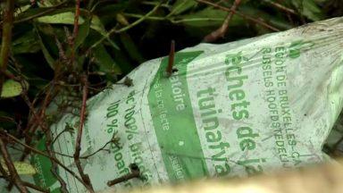 Les nouveaux sacs verts ne résistent pas à la pluie