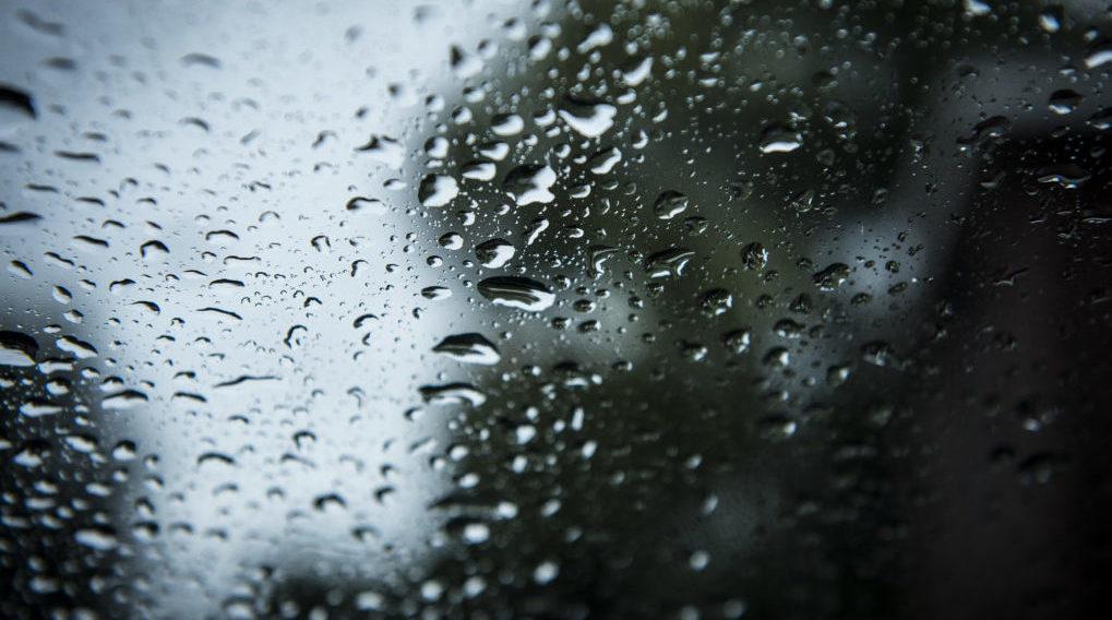 Les averses orageuses rythmeront encore la journée - BX1