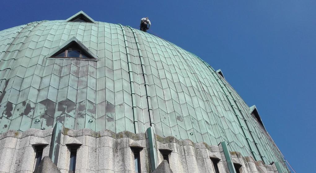 Des bébés faucons trouvés sur le haut de la Basilique de Koekelberg - BX1