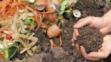 Composte, récupérateur d'eau de pluie … la Ville de Bruxelles octroie des primes environnementales à ses habitants