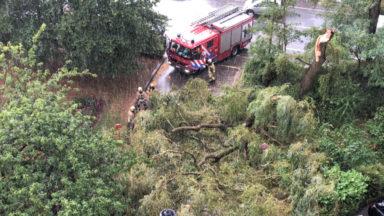 Bilan des intempéries: plus d'une centaine d'interventions en attente chez les pompiers de Bruxelles