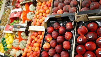 Des fruits gratuits et des animations dans les plaines de vacances de la Ville de Bruxelles